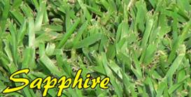 Sapphire (B12) Grass & Turf
