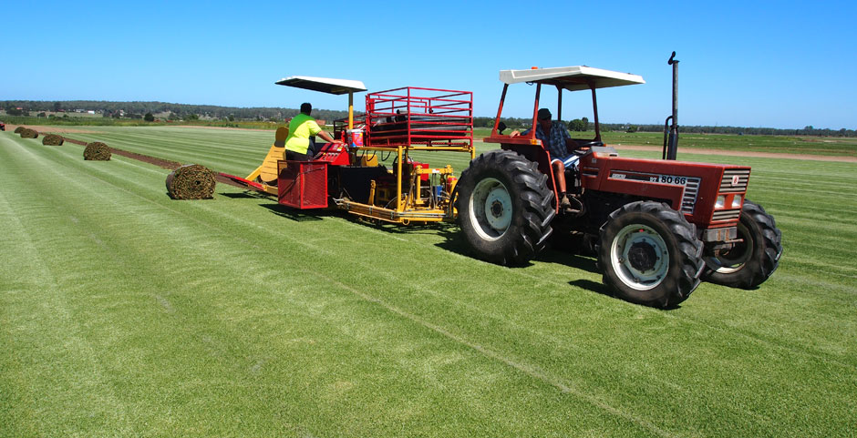 The Major Things To Know Before Installing The Synthetic Turf In Sydney - Videodrom